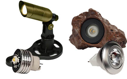 Bulbs Header